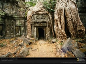 Ta-Prohm-Temple, Cambodia